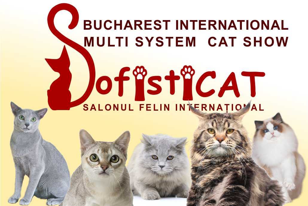 SALONUL INTERNATIONAL FELIN